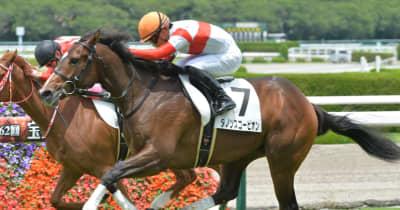 【POG】注目の血統馬ダノンスコーピオンが勝ち名乗り