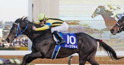 ハーツクライが種牡馬を引退