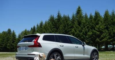 【青山尚暉のわんダフルカーライフ】夏の愛犬とのドライブ旅行で気になる害虫対策