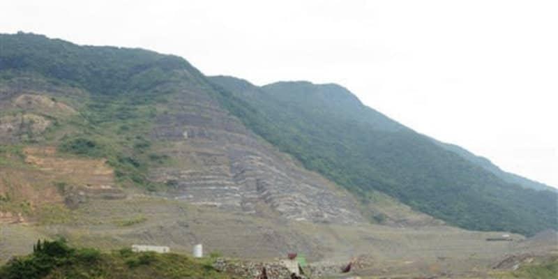 国内最大級の草食恐竜と判明 天草・御所浦で発見の化石   熊本日日新聞