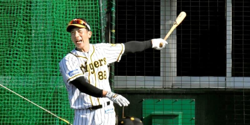 阪神・矢野監督 充実キャンプに「100点に近い」 チーム内競争激化に手応え