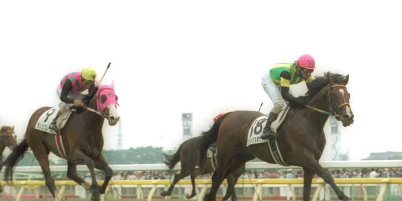 ジャングルポケット死す  01年ダービー、ジャパンC覇者 23歳