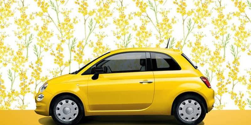 3月8日は黄色いミモザの花を贈ろう! フィアットが黄色い限定車を発売