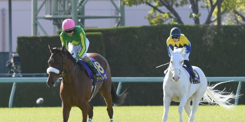 【桜花賞】サトノレイナスまた2着 ルメール「18番ありがとうございます」