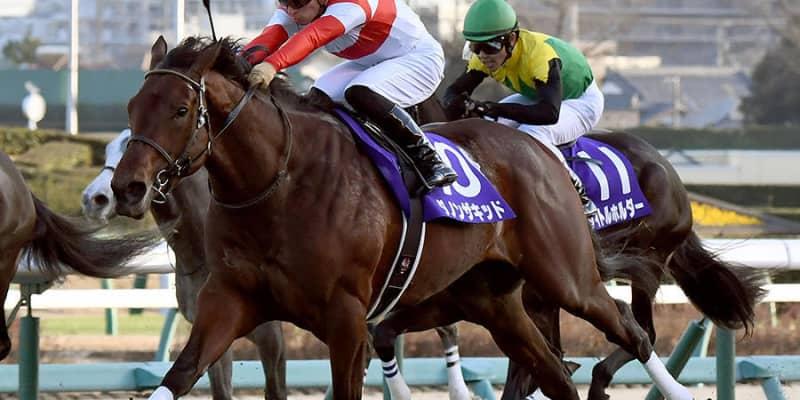 【皐月賞】ダノンザキッド518キロ、エフフォーリア509キロ 調教後の馬体重