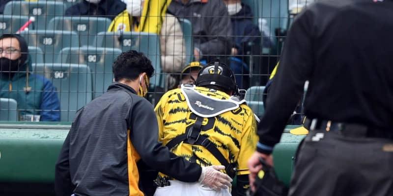 阪神・梅野の交代理由は「ブワッと腫れたから」矢野監督説明も「多分、大丈夫」