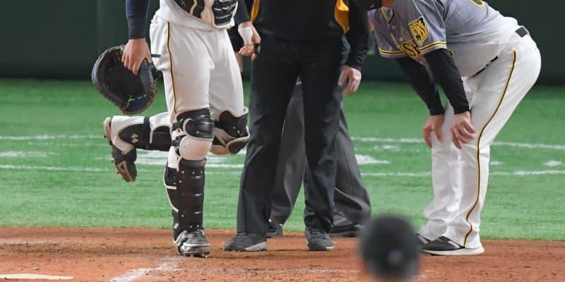 阪神・梅野が三回で交代 代打に陽川 ファウルチップ直撃の影響か