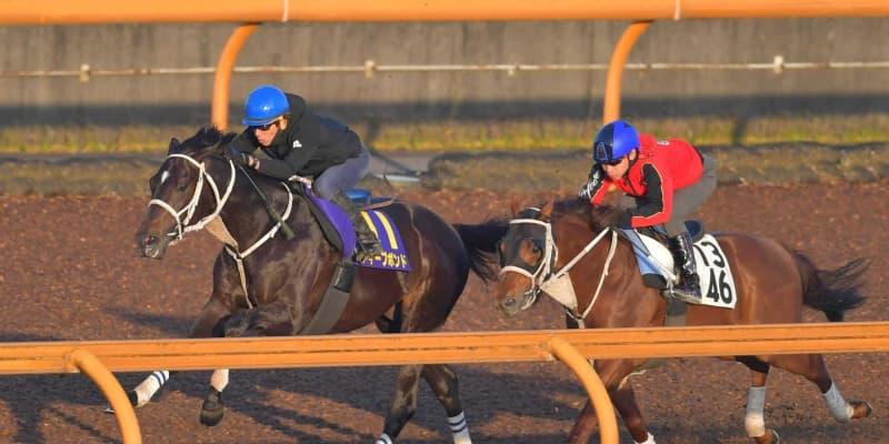 【天皇賞】ディープボンド反応鋭く2馬身先着 圧勝の前走同様に状態良好!