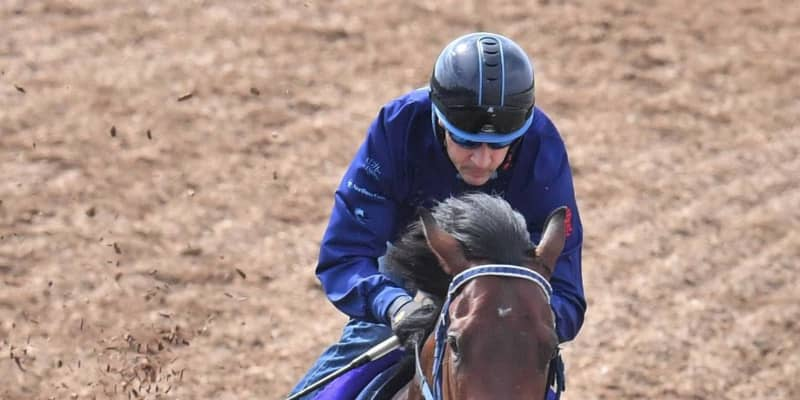 【NHKマイルC】シュネルマイスター楽々2馬身先着 相手強化、左回り問題なし