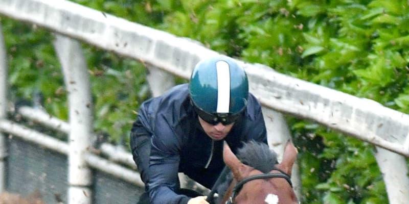 【NHKマイルC】世界的良血馬グレナディアガーズ完璧 指揮官「ポテンシャル無限」