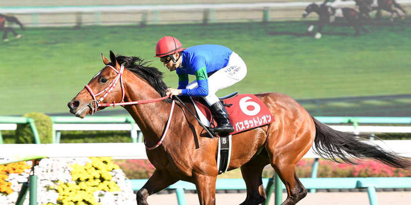 【NHKマイルC】バスラットレオンが3.8倍で1番人気、2歳王者グレナディアガーズは3.9倍で2番人気 前日最終オッズ