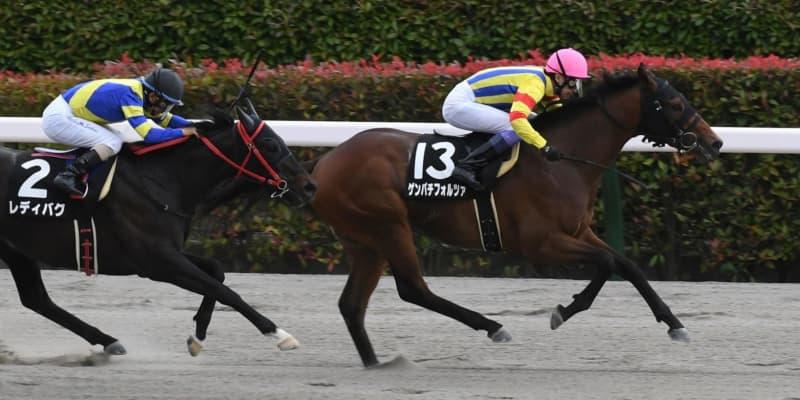 【青竜S】ゲンパチフォルツァがオープン初勝利 武豊「理想通りの競馬」