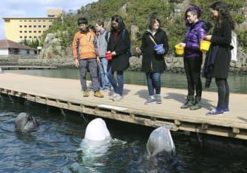 捕鯨文化を学ぶツアーで、和歌山県太地町立くじらの博物館を訪れた米国やカナダの大学院生ら=9日