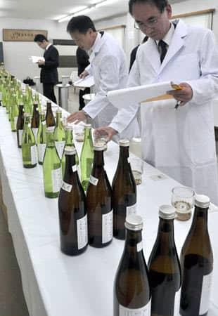 新酒の香りや味を確かめる審査員(京都市伏見区・伏見酒造組合)