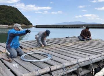 営業開始を前にいかだを補修する地元漁業者ら