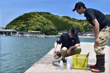 調査のため、容器に採水する京都微生物研究所の職員たち(舞鶴市野原・野原海水浴場)