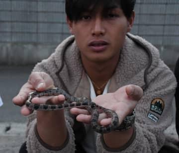 シロマダラヘビを発見した花見川区の竹内さん=千葉市花見川区