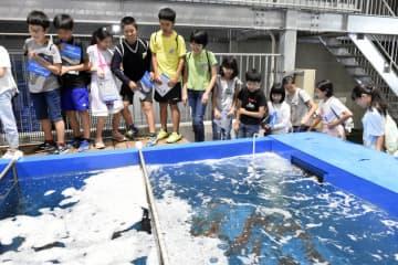 リニューアルした施設を見学する児童ら=29日、鳥取県境港市