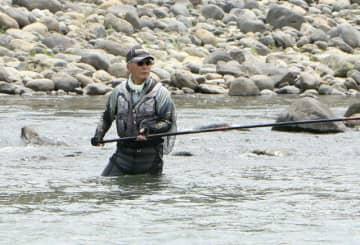 大野川に入り、友釣り用の長いさおでアユを狙う釣り人=1日、豊後大野市犬飼町
