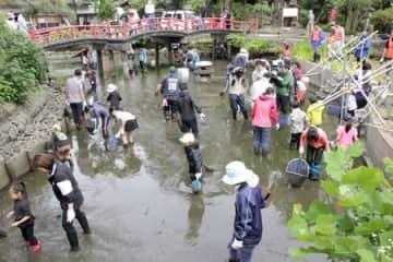 水が抜かれた八幡公園の池=三条市八幡町
