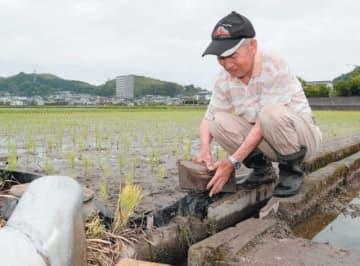 小雨が降る中、田んぼの手入れをする横山照さん=26日午前、大分市口戸