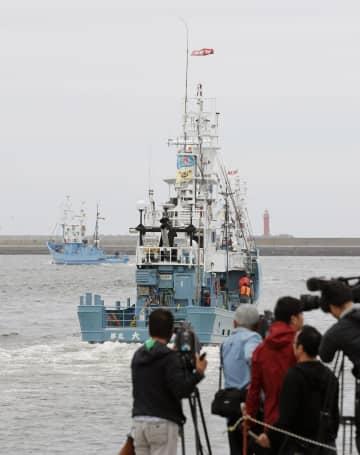 31年ぶりに商業捕鯨が再開され、釧路港から出港する捕鯨船=1日午前、北海道釧路市