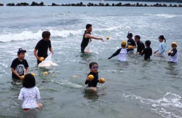 海に浮かべられた夏みかんを集める子どもたち(舞鶴市神崎・神崎海水浴場)