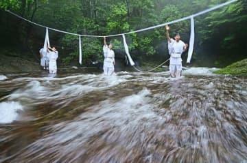 雨が降る中、水量が増した那智の滝の上流に、大しめ縄を張る神職(9日、和歌山県那智勝浦町で)
