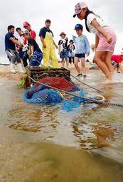「改良マンガ」を砂浜に引き上げる子どもら=神戸市須磨区の須磨海岸
