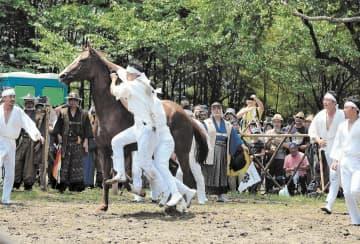 逃げ回る馬を必死で取り押さえる御小人