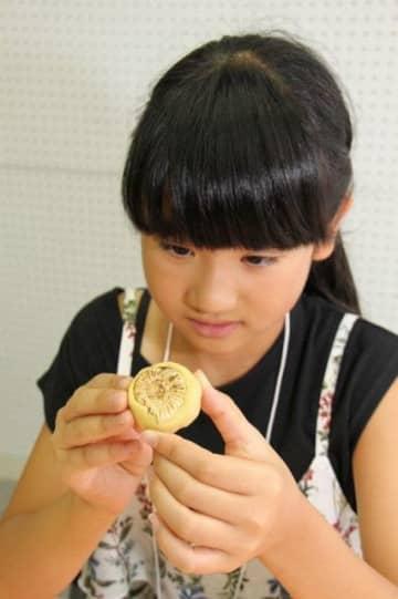 アンモナイト化石の型を取る児童