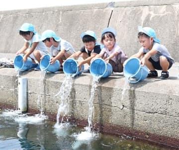 クロダイの稚魚を放流する子どもたち