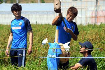 顔を描き込んだかかしを水田に設置する選手