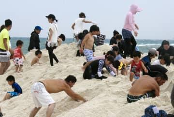 「熊野水軍埋蔵金探し」が始まり、砂を掘って宝探しをする人たち=23日、和歌山県白浜町の白良浜