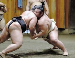 膝の状態を確認しながら朝稽古で汗を流した貴景勝=東京都台東区の千賀ノ浦部屋