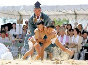 力いっぱいに相撲を取る小学生たち(9日午前11時34分、京都市北区・上賀茂神社)