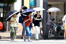 9月に入っても暑い日が続く。熱中症への警戒は引き続き必要だ=西宮市高松町(撮影・風斗雅博)