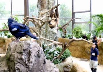 足羽山公園遊園地のふれあい動物舎ハピジャンは、17種の動物が展示され、リピーターも多く好評という=9月11日、福井県福井市山奥町