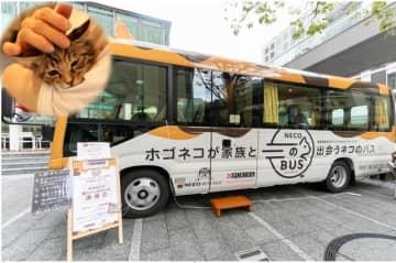 保護猫が家族と出会うために運営されている「ネコのバス」(提供)