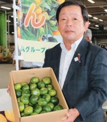 「今年もおいしいおおいた早生を消費者に届けられる」と話す県柑橘研究会の木村房雄会長=13日午前、大分市豊海の市公設地方卸売市場