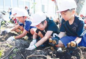 笑顔でジャガイモを収穫する子どもたち