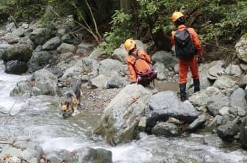 キャンプ場付近の川で、災害救助犬を使って行われる行方不明の女児の捜索=24日午前、山梨県道志村