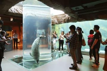 来年4月から入園料を値上げする旭山動物園の「あざらし館」=2日、北海道旭川市