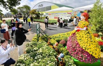 華やかな菊人形を楽しむ来場者ら=10月5日、福井県越前市武生中央公園