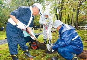 エゾヤマザクラを植える参加者