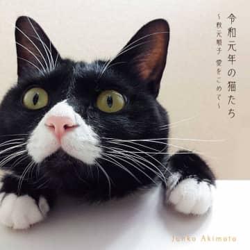 秋元順子『令和元年の猫たち~秋元順子 愛をこめて~』