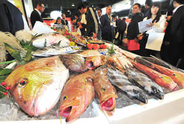 全国各地で水揚げされた鮮魚や加工品がずらりと並んだ展示会=山形市公設地方卸売市場