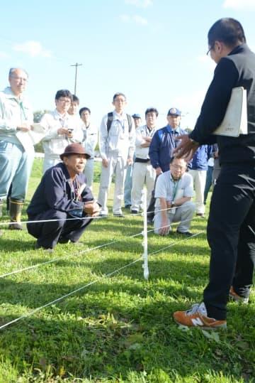 電気柵の設置方法について学ぶ参加者。イノシシから農地を守る対策が急務となっている=9日、洋野町