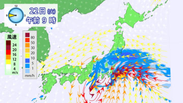 22日(火)午前9時の雨と風の予想