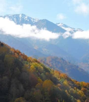 ヒワ平展望台から望む雪化粧した北アルプス。中央のなだらかな稜線が小蓮華山=23日、糸魚川市